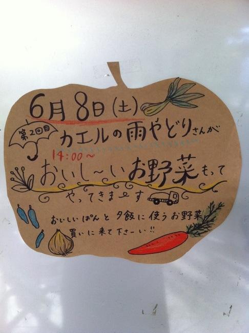 20130608-004536.jpg